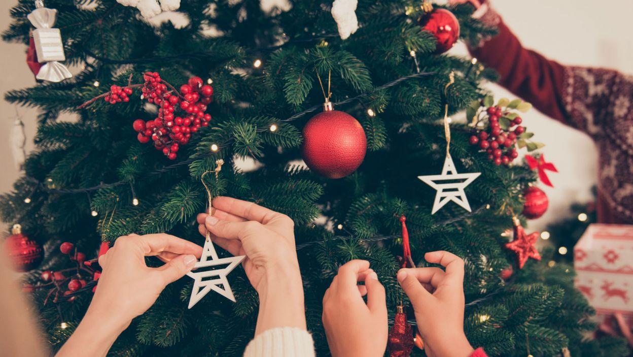 Gwiazdy zrobione z drewna nadadzą jej więcej ciepła... (Fot. Shutterstock)