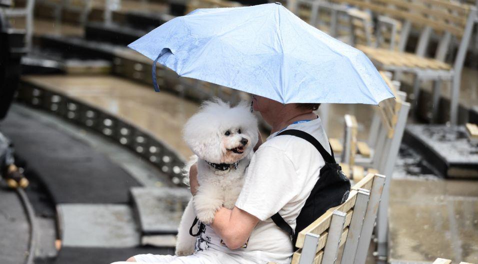 Nawet, gdy spadnie deszcz, nie warto opuszczać opolskiego amfiteatru (fot. TVP)