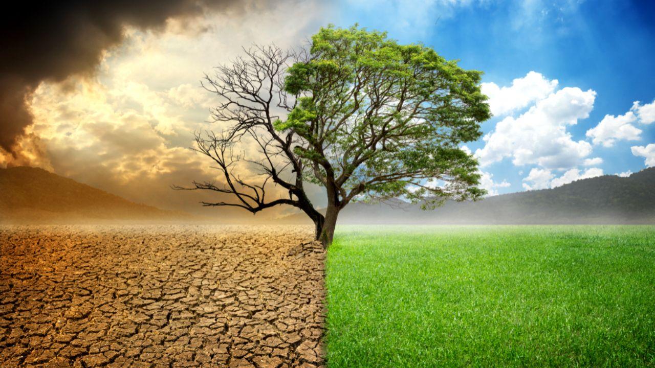 Znamy zwycięzców Wielkiego Testu o Klimacie!