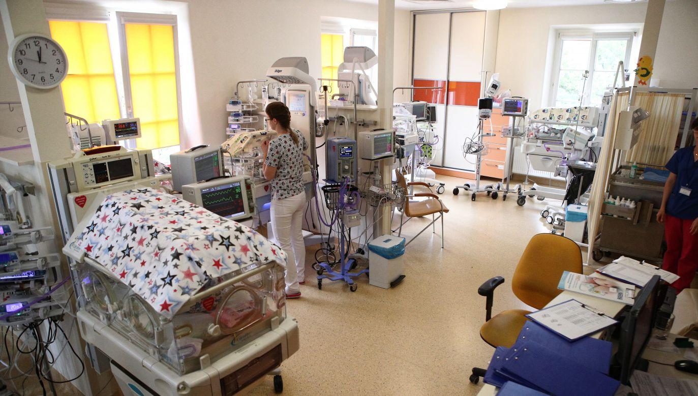 Inkubatory z sześcioraczkami (fot.arch.PAP/Łukasz Gągulski)