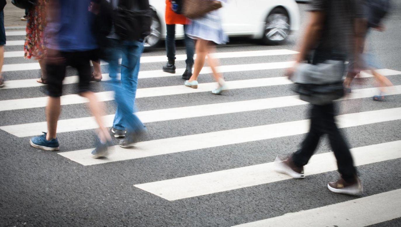 Większość z nas funkcjonuje jako dorośli w podwójnej roli: kierowców i pieszych (fot. Shutterstock/HUANSHENG XU)