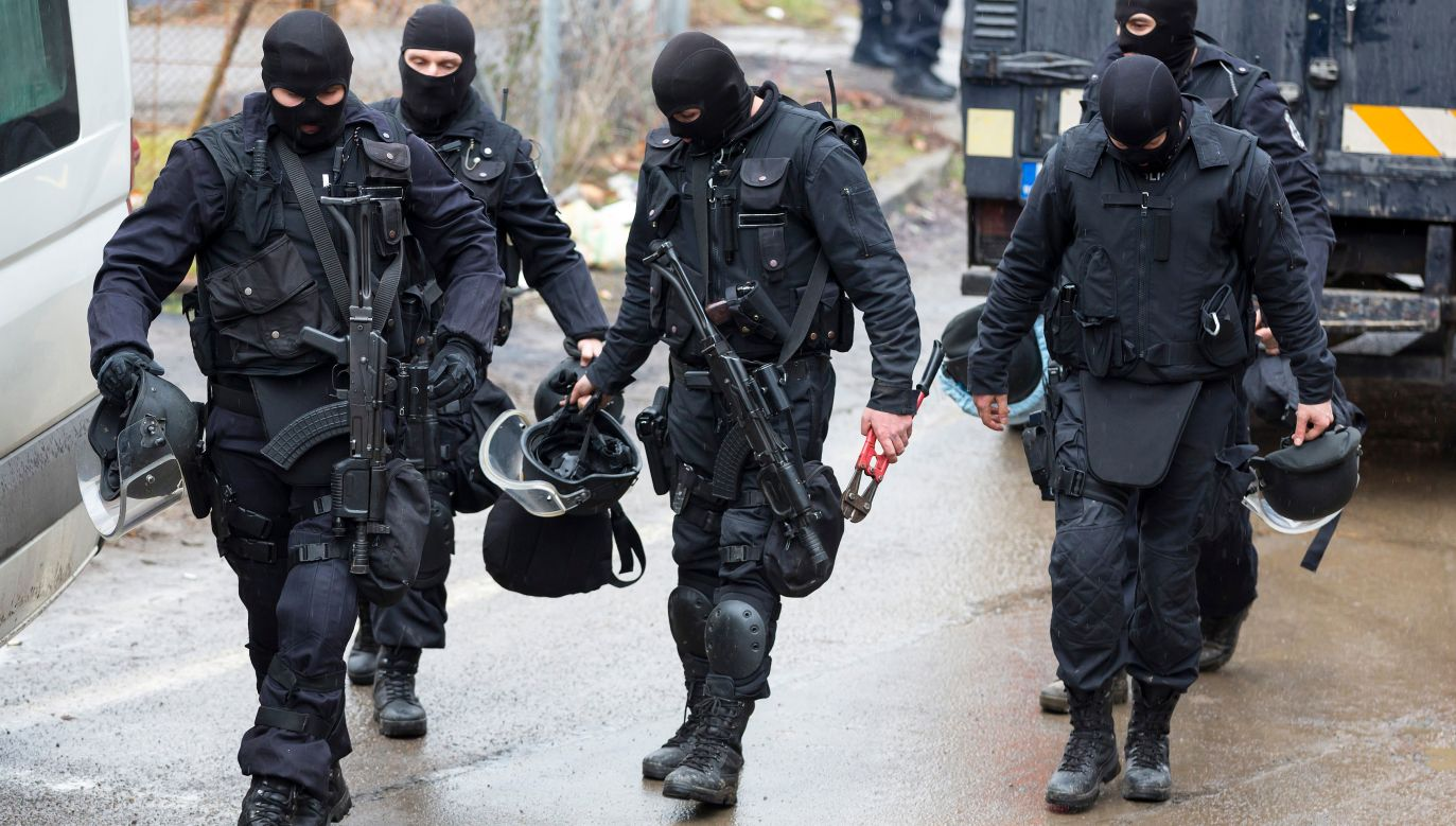 Operacje prowadzą policja i funkcjonariusze DANS (fot. shutterstock/Belish)