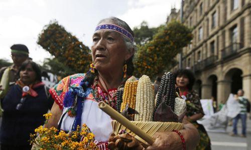 """Rolnik przyszedł z kolbami kukurydzy na protest przeciwko Monsanto, zorganizowany podczas """"Dia Nacional del Maiz"""" (Dzień Kukurydzy) w śródmieściu Meksyku, 29 września 2014 r. Meksykańscy rolnicy, aktywiści i organizacja pozarządowa """"Sin Maiz, Nie siano Pais"""" (Bez kukurydzy, nie ma kraju) manifestują, żeby podnieść świadomość problemów drobnych rolników i wesprzeeć zakaz sadzenia genetycznie zmodyfikowanej kukurydzy, której nasiona dostarcza Monsanto. Fot. REUTERS / Henry Romero"""
