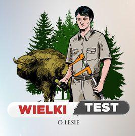 Wielki Test o Lesie