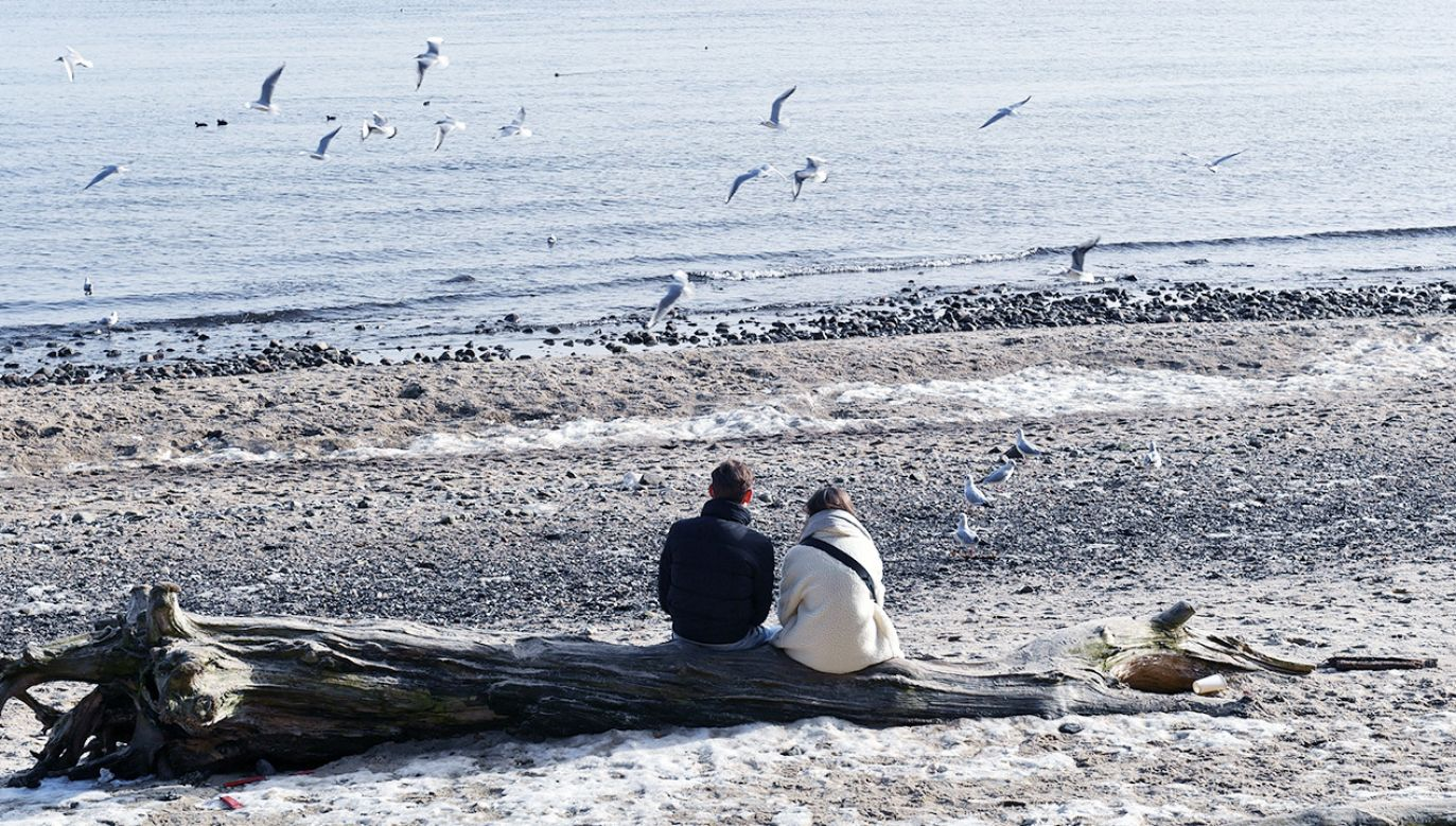 Choroba występuje co roku cyklicznie, ale wcześniej nie padała tak duża ilość ptactwa  (fot. PAP/Adam Warżawa)