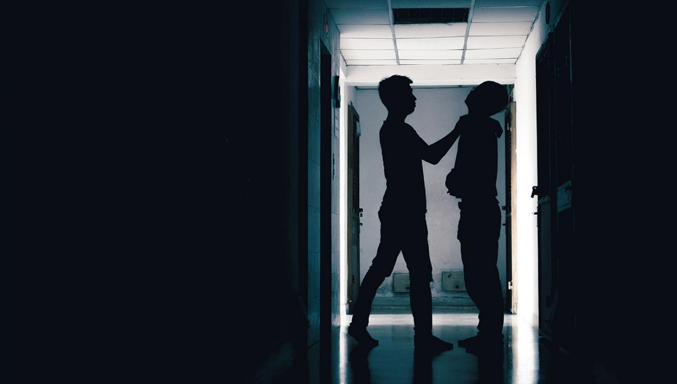 Według nieoficjalnych informacji doszło do bójki między wychowankami ośrodka (fot. Shutterstock/neotemlpars)