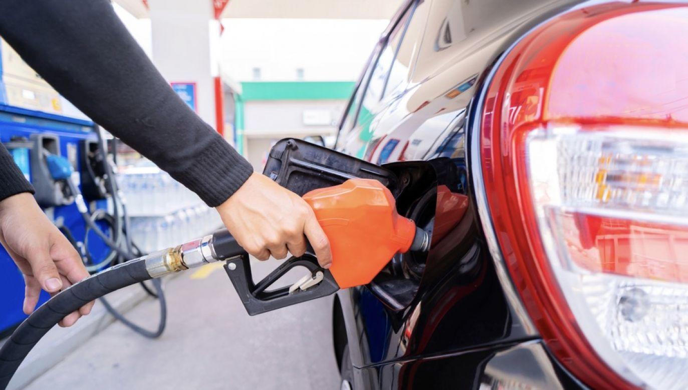 """Właściciele stacji benzynowych """"już lata temu przestali ograniczać się do sprzedaży paliw"""" (fot. Shutterstock/jittawit21)"""