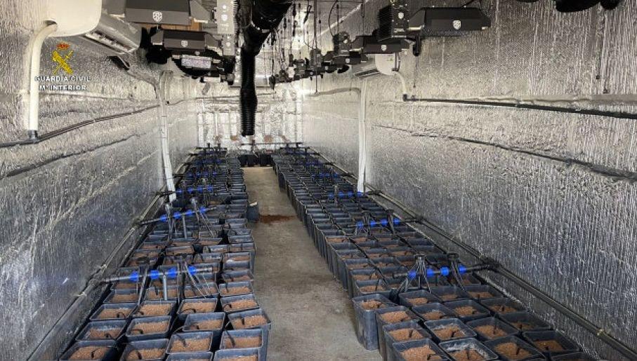 Mobilna uprawa zaopatrywała także w sadzonki klasyczne uprawy kontrolowane przez gang (fot. Guardia Civil)