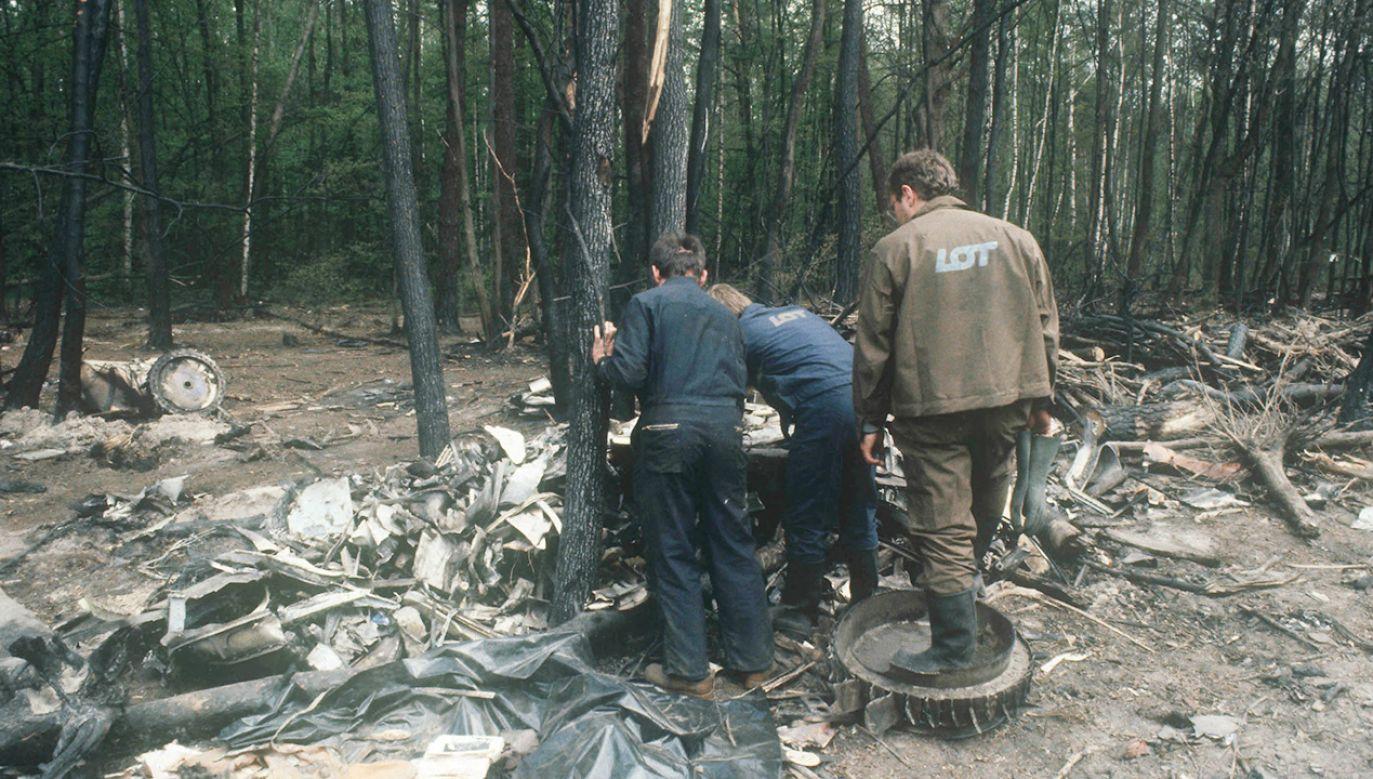 Samolot rozbił się na skraju Lasu Kabackiego (fot. PAP/Tadeusz Zagoździński)