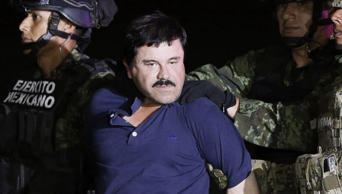 Guzman zaczął narkotykowy proceder w wieku kilkunastu lat od uprawiania marihuany (fot. PAP/EPA/JOSE MENDEZ)