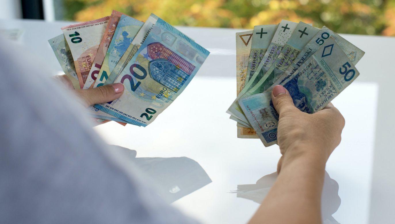 Kursy walut NBP (fot. Shutterstock/Quisquilia)