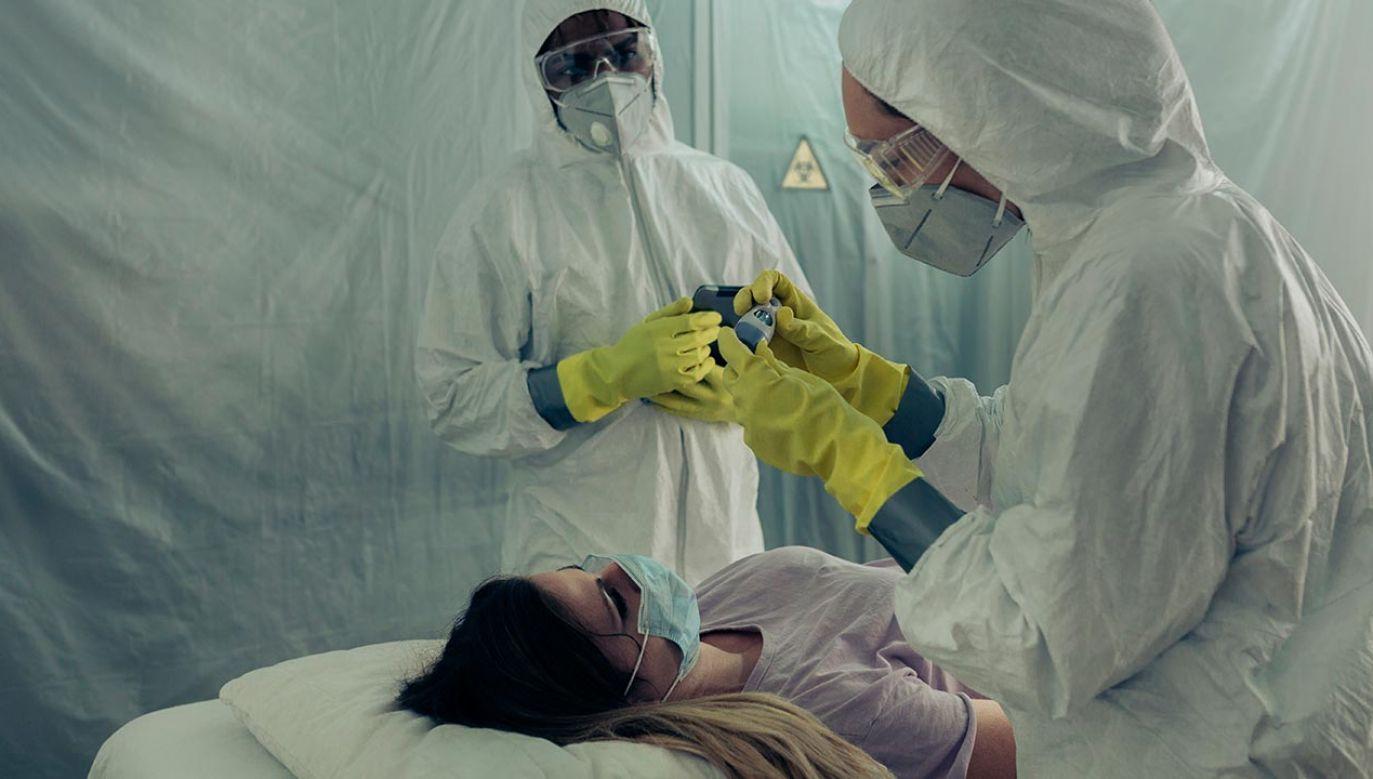 Pacjenci z SARS-CoV-2 są przydzielani do jednej z czterech grup (fot. Shutterstock/David Pereiras)