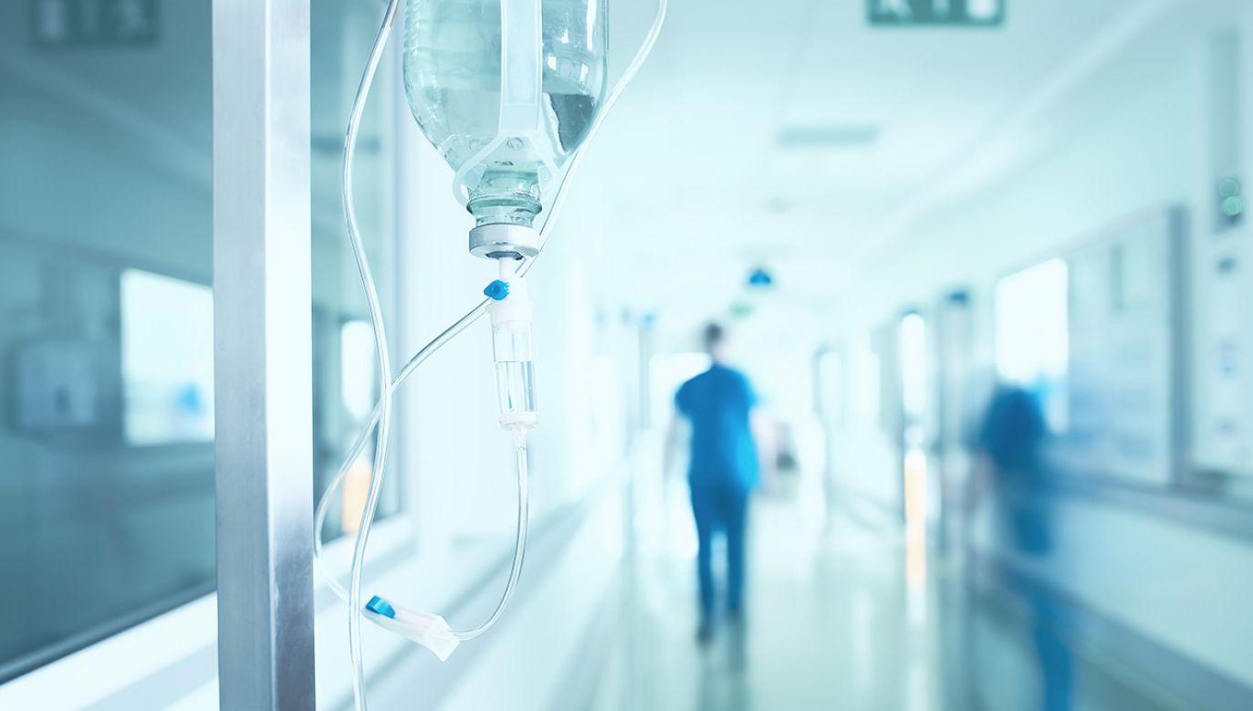 Przebieg zachorowań jest dość łagodny (fot. Shutterstock/sfam_photo)