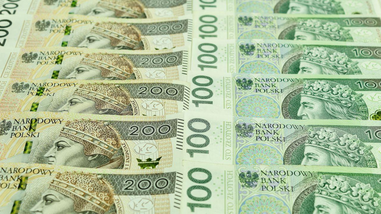Blisko 9,4 mld zł nadwyżki wpłynęło pod koniec maja do budżetu państwa (fot. Shutterstock/Jan Kravtsov)