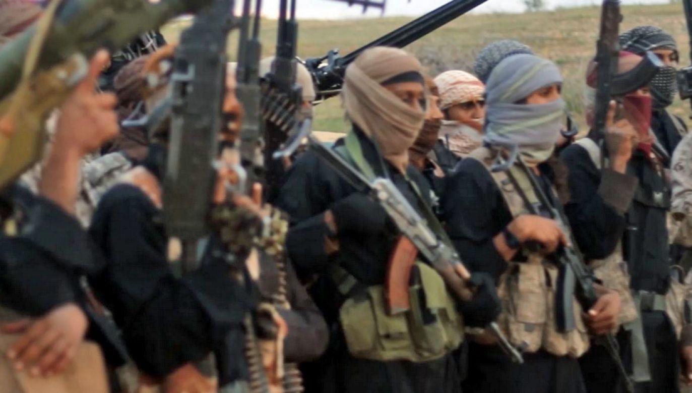 Bojownicy tzw. Państwa Islamskiego wciąż są aktywni na Półwyspie Synaj (fot. TT)