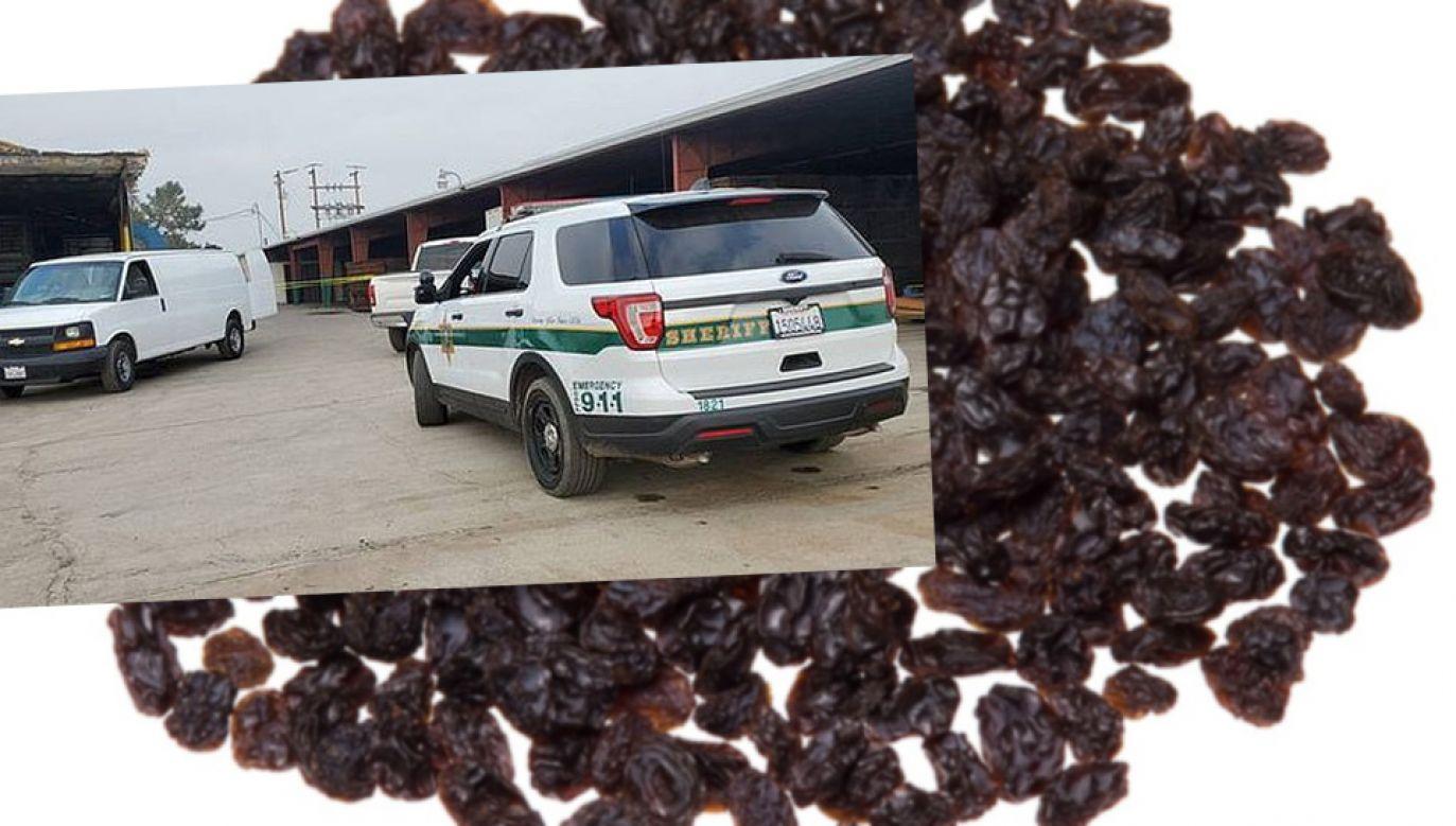 Służby wszczęły śledztwo w sprawie tragedii (fot. Pixabay/Fresno County Sheriff's Office)