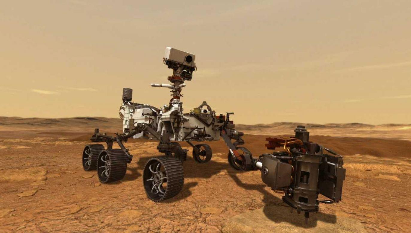 Perseverance ma działać przynajmniej jeden rok marsjański (fot. NASA)
