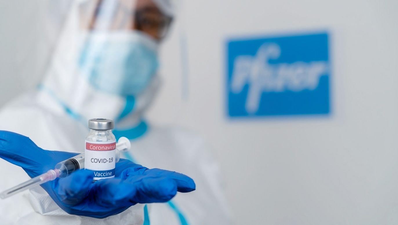 Michał Dworczyk pytany był o szczegóły dostaw do Polski szczepionek Pfizer (fot. Shutterstock)