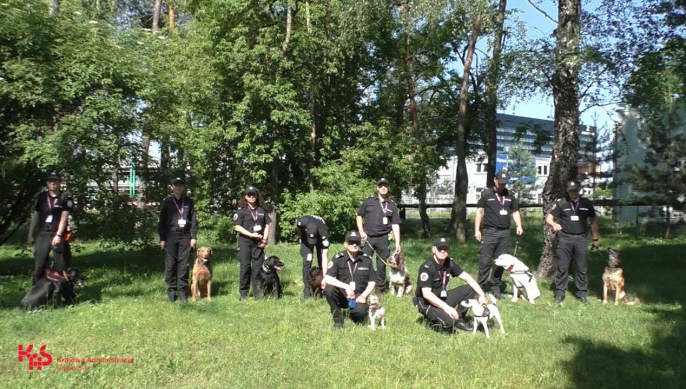 W szeregach mazowieckiej Krajowej Administracji Skarbowej na co dzień pełni służbę 13 psów (fot. KAS)
