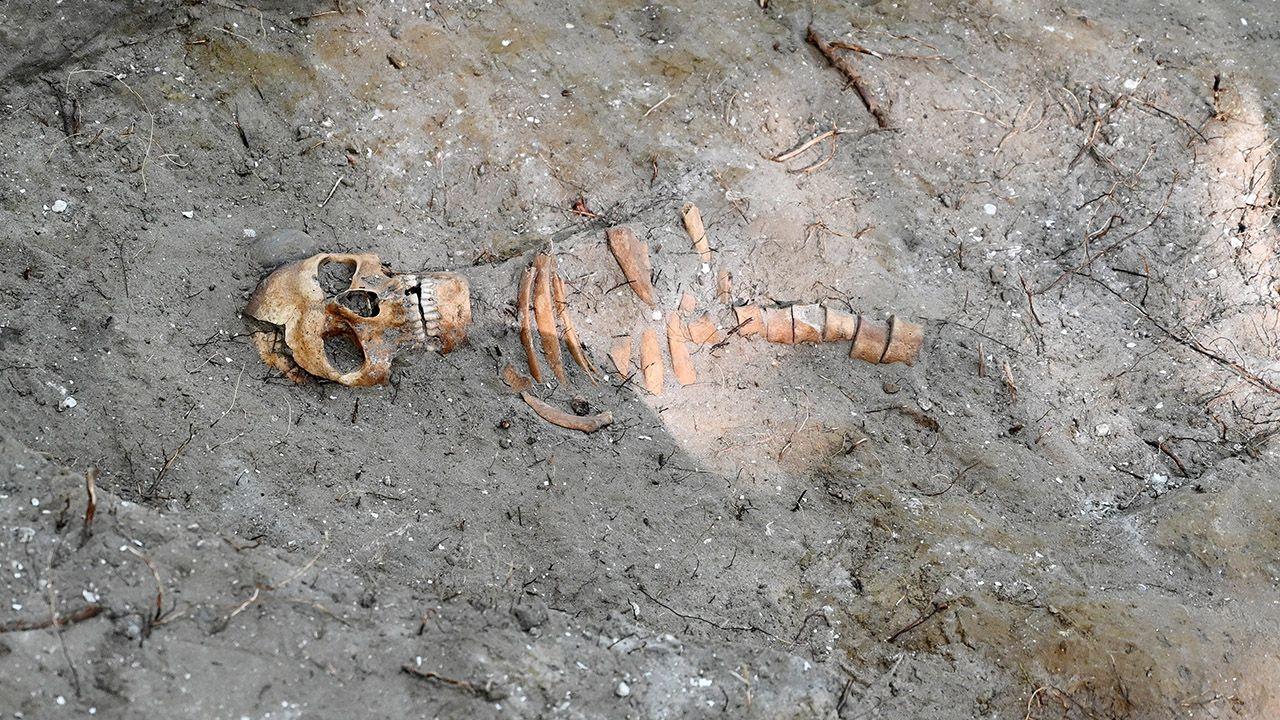 W tym roku prace archeologiczne na Westerplatte są planowane do końca października (fot. PAP/Marcin Gadomski)
