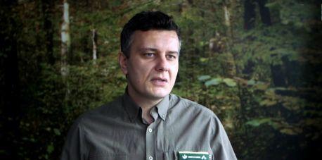 Jaki wpływ mają zmiany klimatyczne na las?
