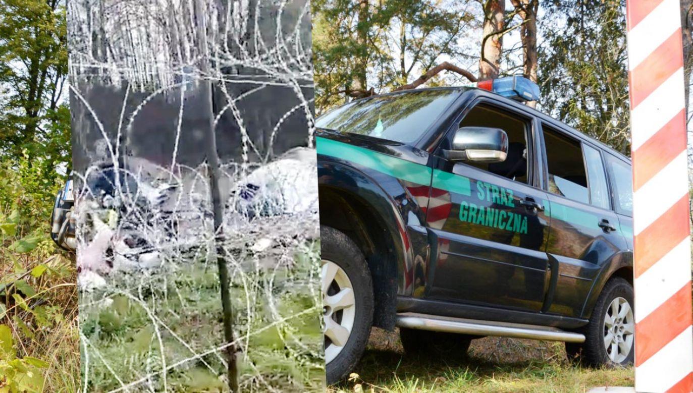Koczowisko po stronie granicznej (fot. TT/Straż Graniczna)