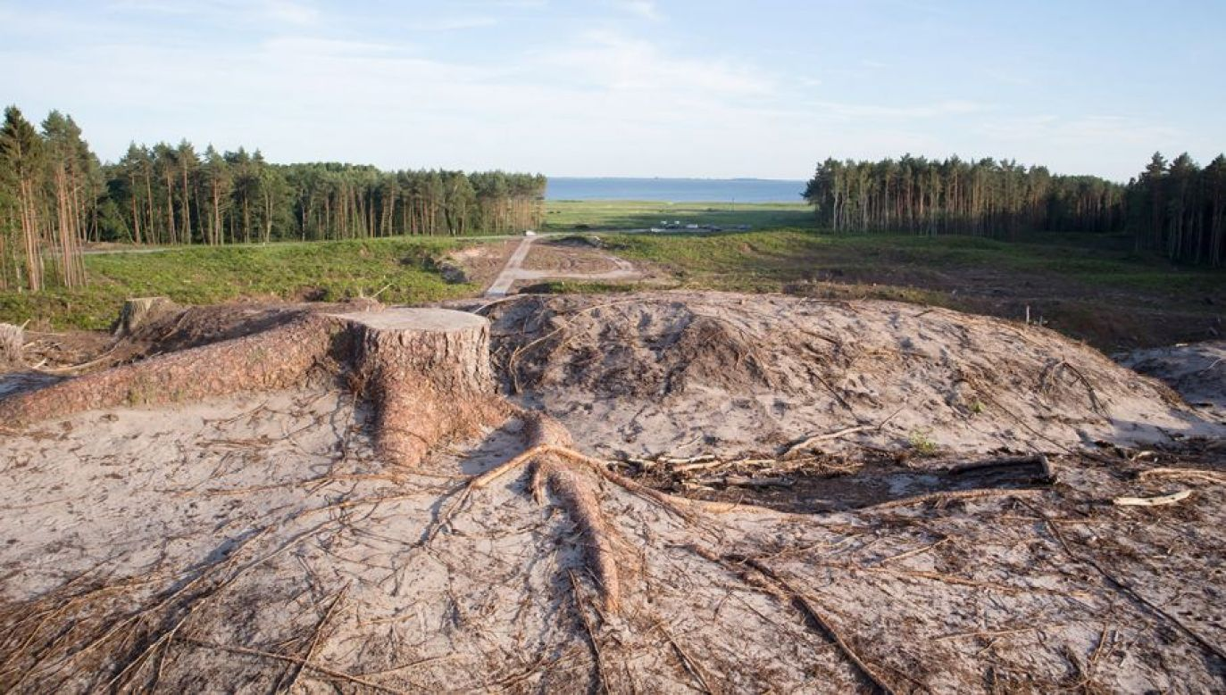 Moskwa stara się zablokować inwestycję groźną dla jej interesów (fot. Shutterstock/Evan Lorne)