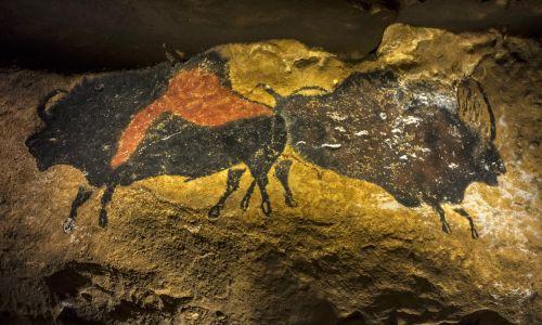 Replika paleolitycznych malowideł z groty Lascaux. Mimo zamknięcia jaskini dla turystów, a ostatnio też dla naukowców (wstęp ma tylko kilku i tylko dwa razy w miesiącu) malowidła oryginalne niszczeją na skutek działania pary wodnej i dwutlenku węgla. Na ścianach pojawił się grzyb, rysunki zaczęły pokrywać się ciemnymi plamami. Fot. Arterra/UIG via Getty Images