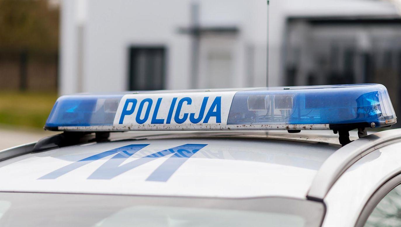 Policja ustali, jak doszło do wypadku (fot. Shutterstock/Bart Bourdon)