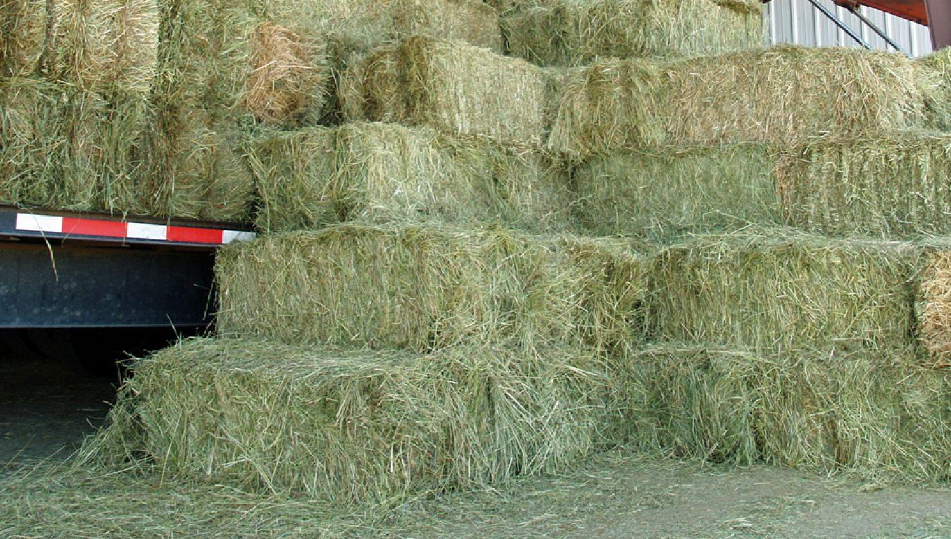 Kierowca nie był igłą i znalezienie go nie stanowiło dużego wyzwania (fot. Wiki 3.0/David Shankbone)